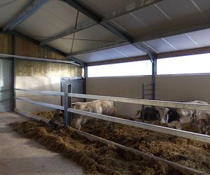 Entreprise Poncelet Frères – Bâtiments agricoles